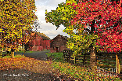 Fall On A Farm In Oregon Poster by Tonia Noelle