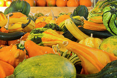 Farmer's Market, Autumn In Luling, Texas Poster