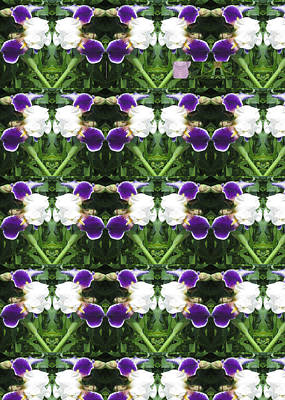 Flowers From Cherryhill Nj America White  Purple Combination Graphically Enhanced Innovative Pattern Poster by Navin Joshi