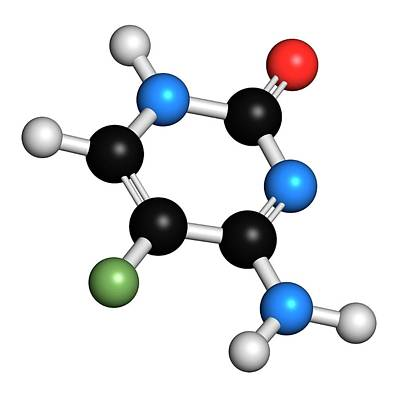 Flucytosine Antimycotic Drug Molecule Poster