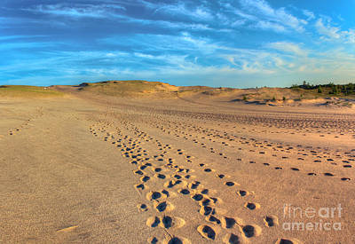 Footprints Through The Dunes Poster by Twenty Two North Photography