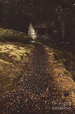 Forest Log Cabin Or Cottage With Leafy Autumn Path Poster by Jorgo Photography - Wall Art Gallery