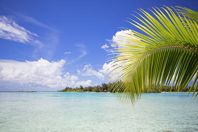 French Polynesia, Society Island, Bora Poster
