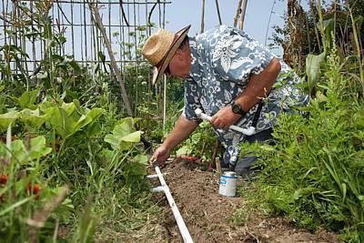Gardener Making Irrigation System Poster by Jim West