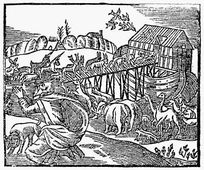 Genesis Noah's Ark Poster