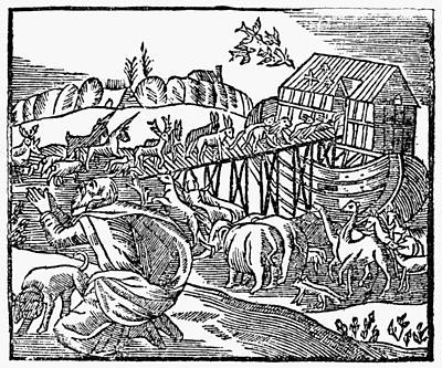 Genesis Noah's Ark Poster by Granger