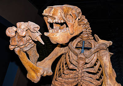 Giant Ground Sloth Poster