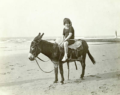 Girl On Donkey On The Beach North Sea, The Netherlands Or Poster by Artokoloro