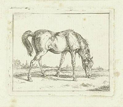 Grazing Horse, Jan Dasveldt Poster