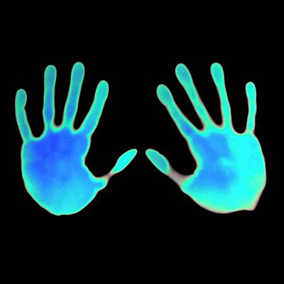 Hand Prints On Thermochromic Paper Poster by Science Photo Library