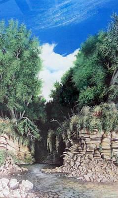 Hidden Canyon Poster by DA Neace