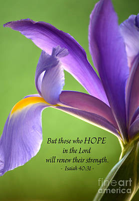 Hope Poster by Deb Halloran
