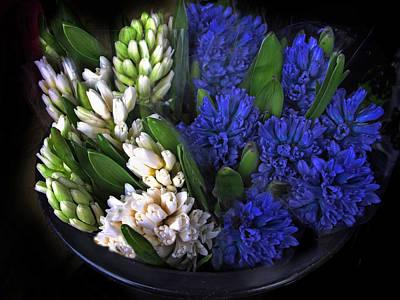 Hyacinth Poster by Jessica Jenney