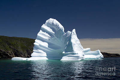 Poster featuring the photograph Iceberg by Liz Leyden