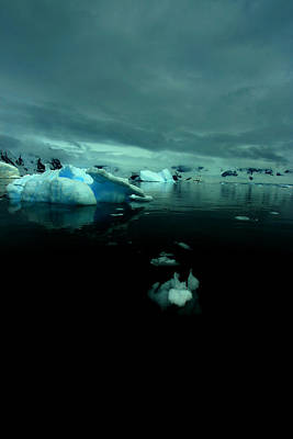 Poster featuring the photograph Icebergs by Amanda Stadther