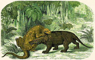 Poster featuring the photograph Iguanodon Biting Megalosaurus by Wellcome Images