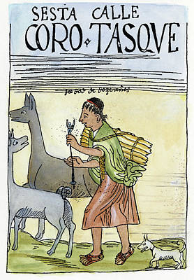 Inca Shepherd Poster by Granger