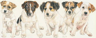 Jack Russell Terrier Puppies Poster by Barbara Keith