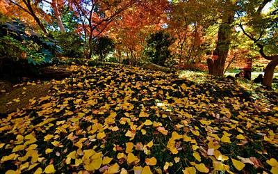 Poster featuring the photograph Japanese Gardens by Ricardo J Ruiz de Porras