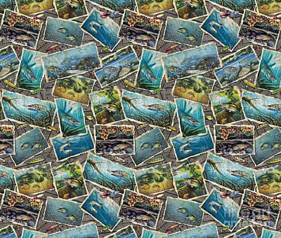 Jon Q Wright Fish Paintings Bedding Poster