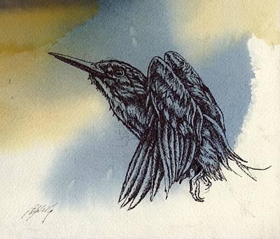 Kingfisher Drawing Poster by Alfred Ng