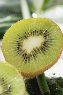 Kiwi Fruit, Halved Poster