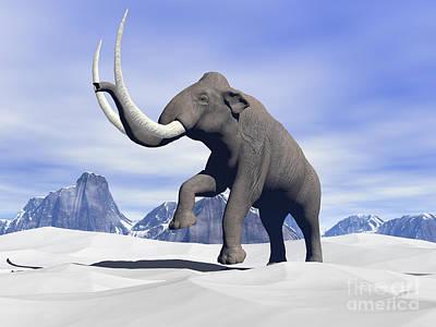 Large Mammoth Walking Slowly Poster