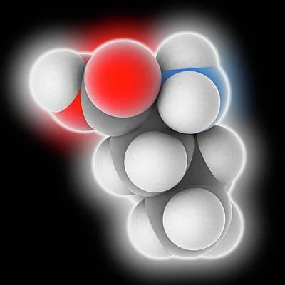 Leucine Molecule Poster by Laguna Design
