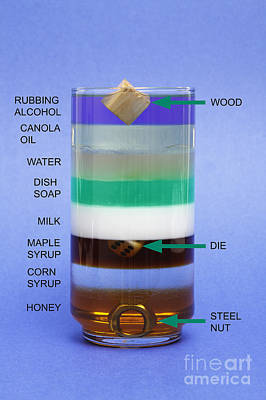 Liquids And Solids Of Different Density Poster by GIPhotoStock