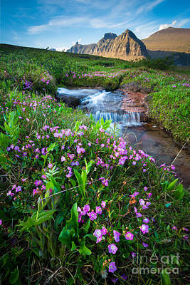 Logan Pass Creek Poster by Inge Johnsson