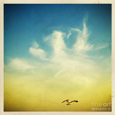 Lonely Seagull Poster by Setsiri Silapasuwanchai