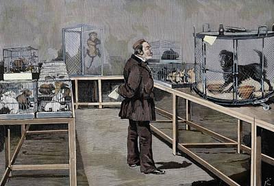 Louis Pasteur (1822-1895 Poster