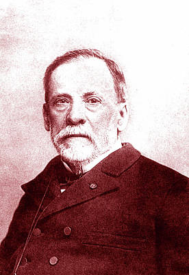 Louis Pasteur Poster by Collection Abecasis