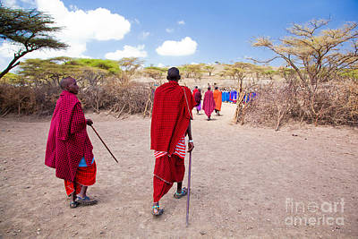 Maasai People And Their Village In Tanzania Poster by Michal Bednarek