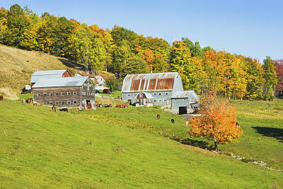 Maine Farm On Side Of Hill In Autumn Poster by Keith Webber Jr