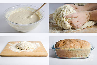Making Bread Poster by Science Source
