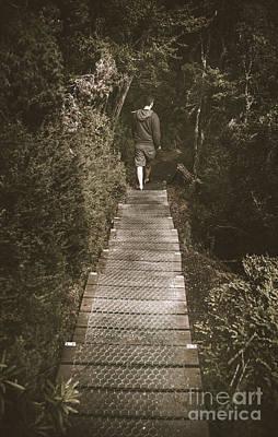 Male Hiker Walking On A Rainforest Wooden Bridge Poster