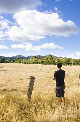 Man Watching Cattle On An Australian Country Farm Poster by Jorgo Photography - Wall Art Gallery