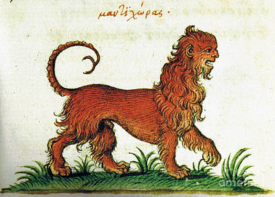 Manticore, Legendary Creature Poster by Photo Researchers