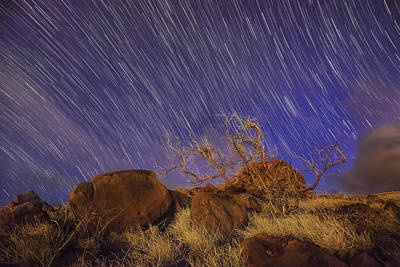 Maui Star Trails Poster by Hawaii  Fine Art Photography