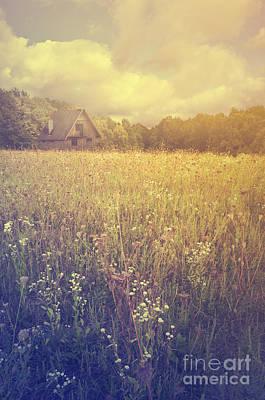 Meadow Poster by Jelena Jovanovic
