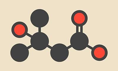 Metabolite Molecule Poster