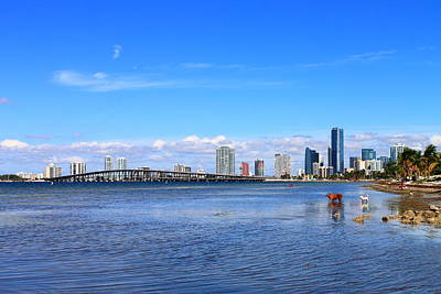 Miami Brickell View From Across Key Biscayne Bridge Poster