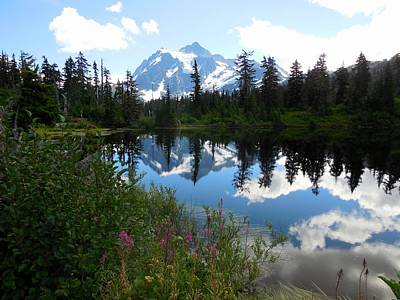 Mount Shuksan Reflection Poster by Karen Molenaar Terrell