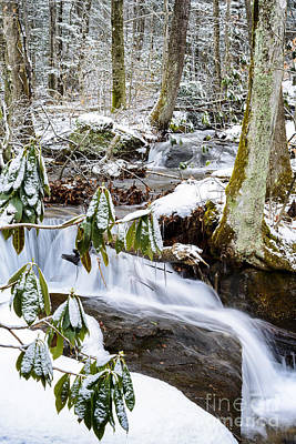 Mountain Stream In Winter Poster by Thomas R Fletcher