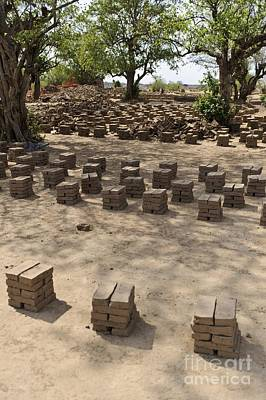 Mud Bricks Drying, Sudan Poster by Matthew Oldfield