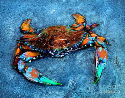 Crabby Blue Poster by Jeff McJunkin