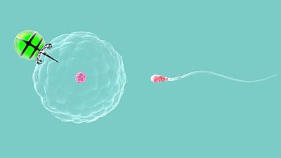 Nano-fertilisation Poster by Christian Darkin