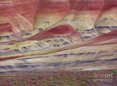 John Day Fossil Beds Painted Hills Poster