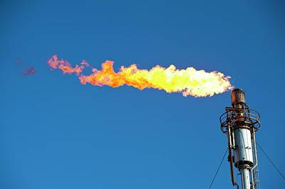 Oil Terminal Flaring Off Gas Poster by Ashley Cooper